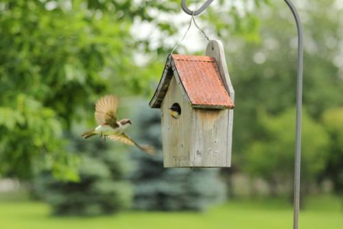 签购房合同需要注意些什么?违约责任需注意