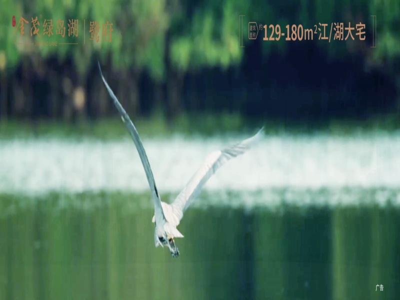 金茂绿岛湖|鹭府